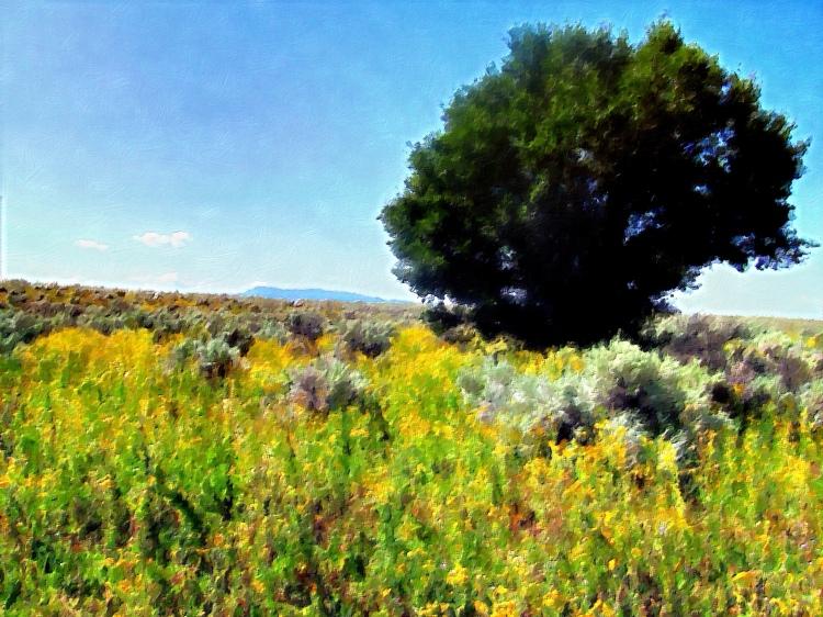 one tree 025