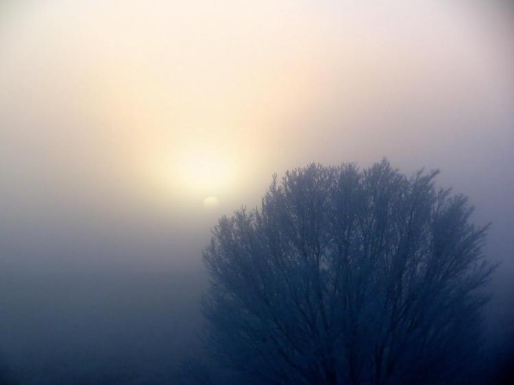 fog-sunrise-23 042.jpg