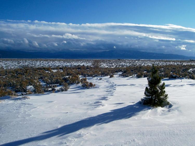 winter 1 040.jpg